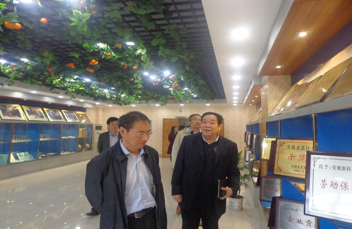 县委书记奚书记、张县长一行领导来我公司视察指导工作